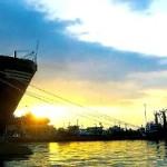 Vehicle dock to be built at Indonesia's Kalibaru Port