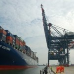 Cai Mep terminal's annual throughput to top 600,000 TEUs