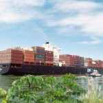 Zim, MOL enhance services