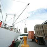 Tax break sought for ICTSI's Hijo Port