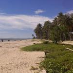 Indonesia mulls new deepwater port in West Kalimantan