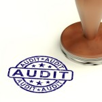 Post-entry audit guidelines set