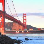 European shippers push 'deeper involvement' of regulators in 2M of Maersk, MSC