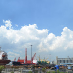 Harbour Centre responds to bulk and breakbulk cargo pile up