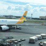 Cebu Pacific Q1 income soars 81%