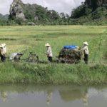 Vietnam releases 5-year economic growth blueprint