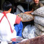Thai economy buoyed by higher exports, production output