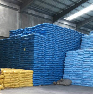 Philippine rice imports